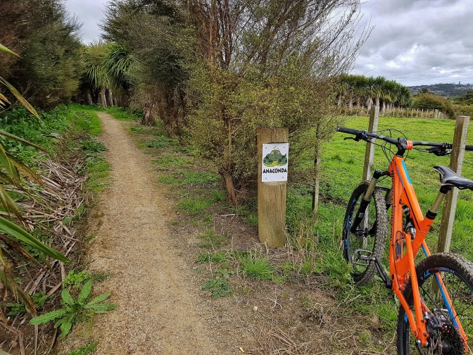 Totara Park Anaconda Bike Trail